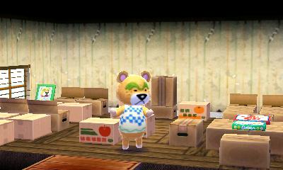 Animal Crossing: Happy Home Designer U2013 Day 8 Continued!